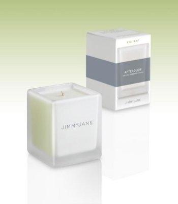 JimmyJane Afterglow natuurlijke Massage Kaars, Fig Leaf